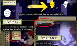 Kunoichi Lily and the Naughty Mansion - Rape